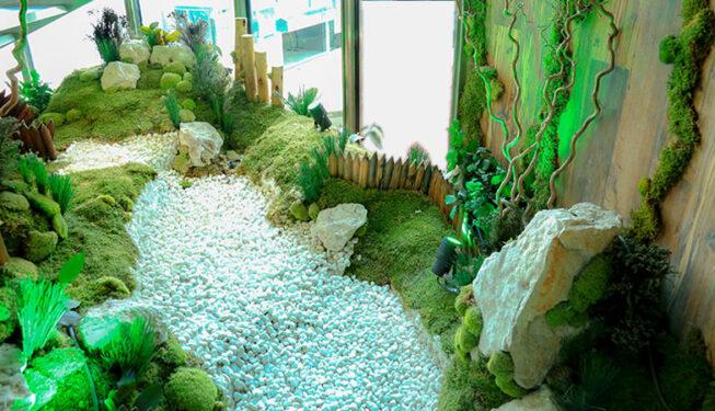 Preserved Indoor Landscape La Cigale Hotel