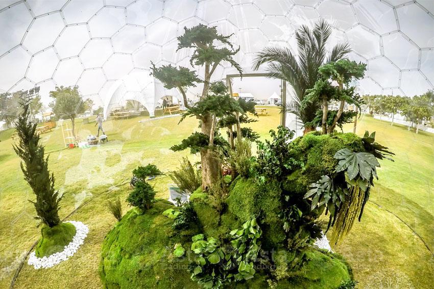 Preserved Indoor Landscape Project at Katara Flower Festival